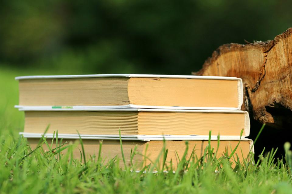 Grundsätze und Satzung, Foto: klimkin, pixabay.com